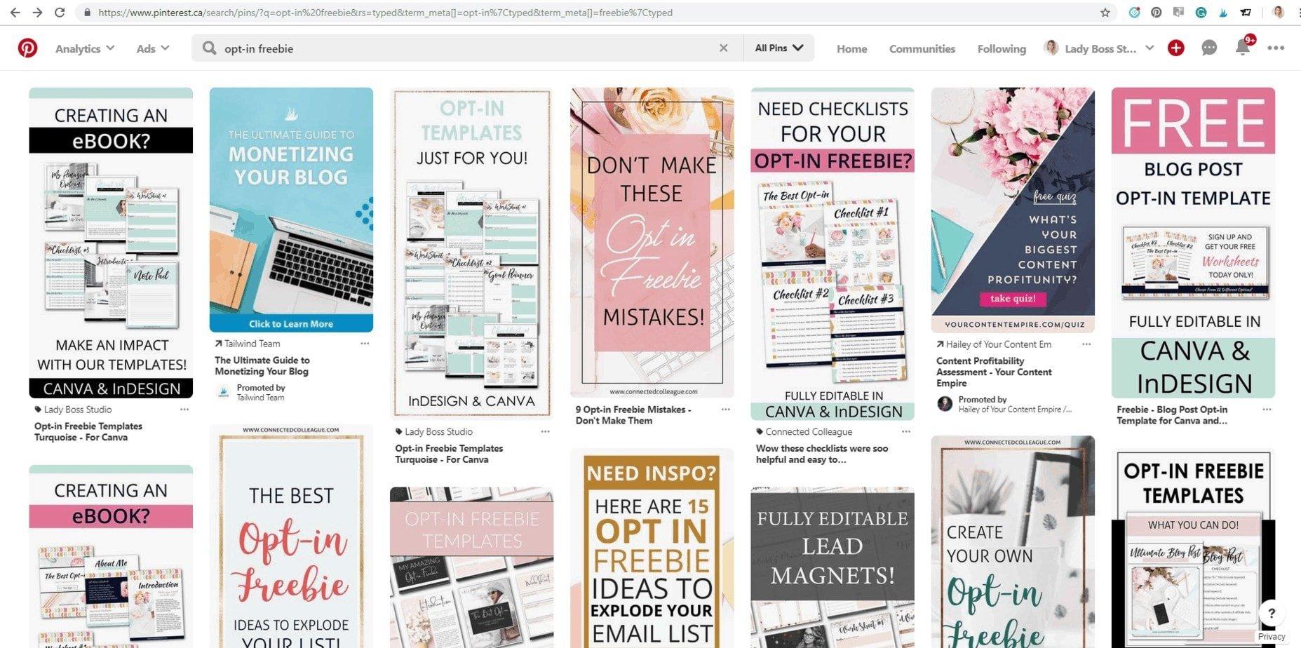Pinterest Search Opt-in Freebie