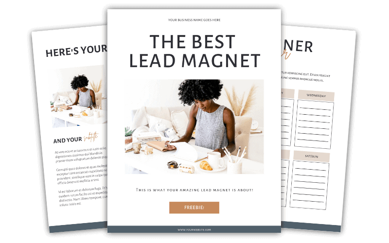 Neutral Lead Magnet Blueprint Templates