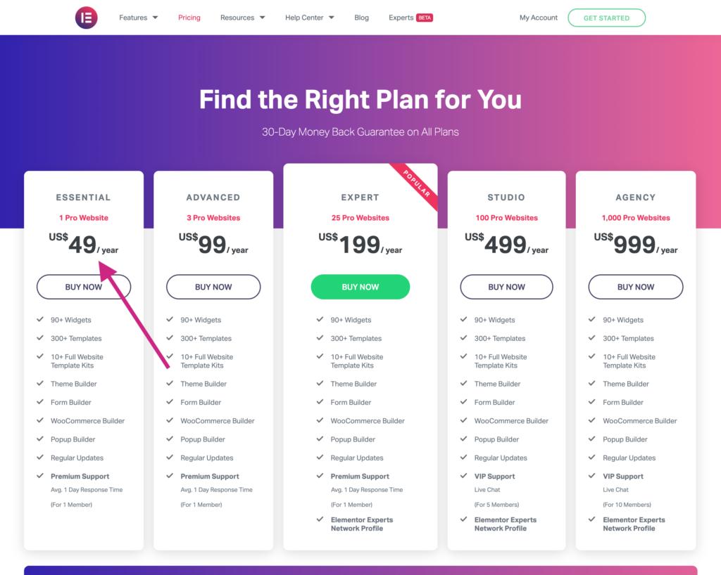Elementor Pricing Plan